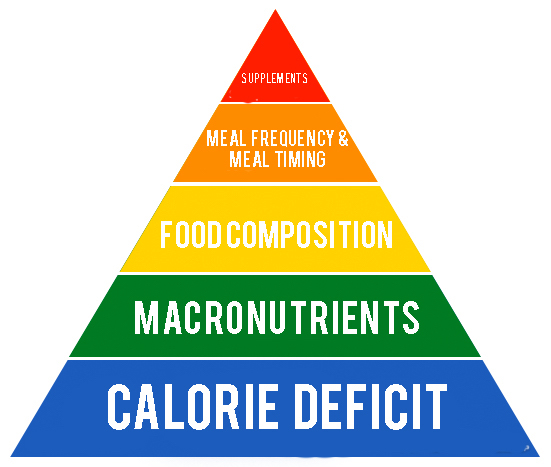 most important weight loss pricicples